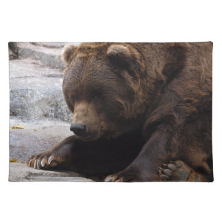 grizzly-bear-014 cloth placemat