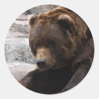 grizzly-bear-015 classic round sticker