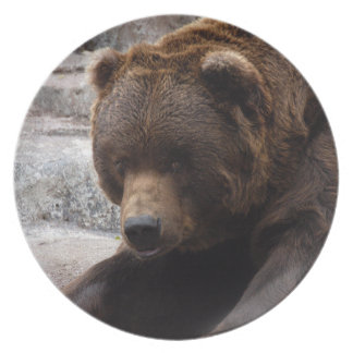 grizzly-bear-016 dinner plate
