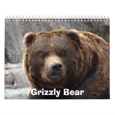 grizzly-bear-017, Grizzly Bear Calendar