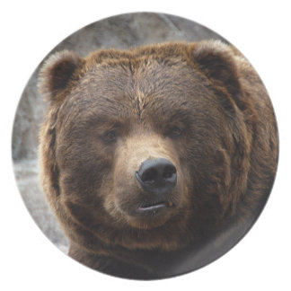 grizzly-bear-017 plate
