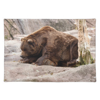 grizzly-bear-018 cloth placemat