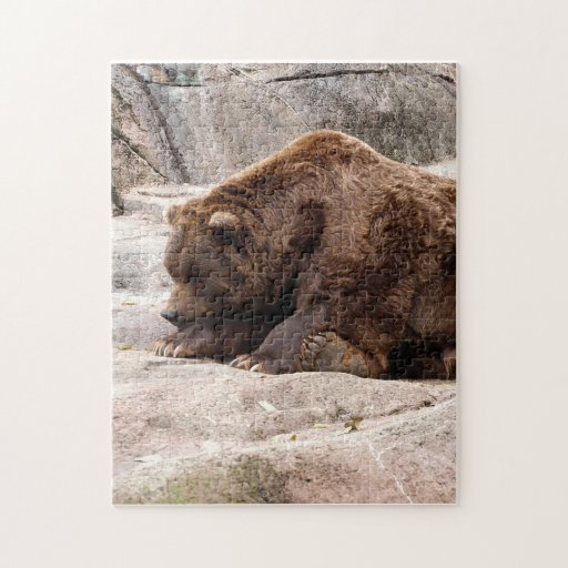 grizzly-bear-018 puzzles