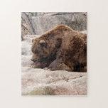 grizzly-bear-018 rompecabeza con fotos