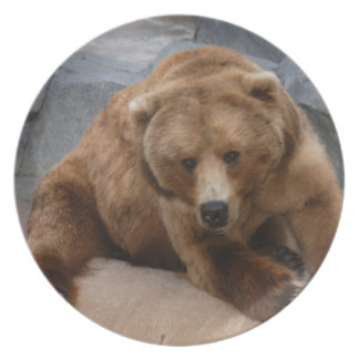 grizzly-bear-10x10 plate