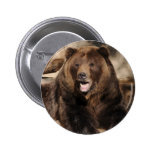 Grizzly Bear Boar Buttons