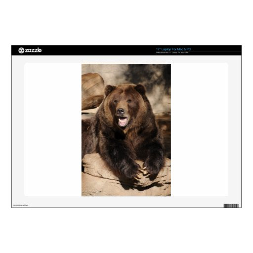 Grizzly Bear Boar Decals For Laptops