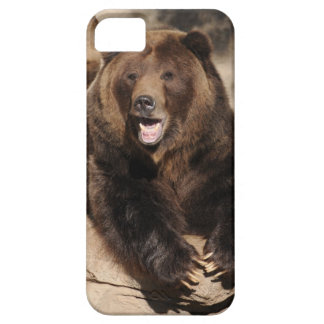 Grizzly Bear Boar iPhone SE/5/5s Case