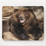 Grizzly Bear Boar Mouse Mat