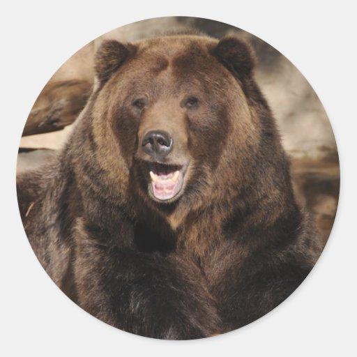 Grizzly Bear Boar Stickers