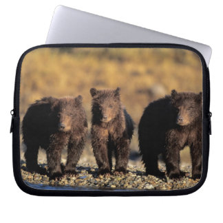 Grizzly bear, brown bear, cubs, Katmai National Laptop Computer Sleeves
