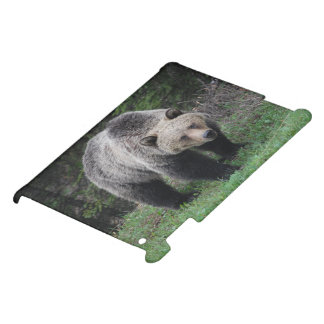 Grizzly Bear Case For The iPad 2 3 4