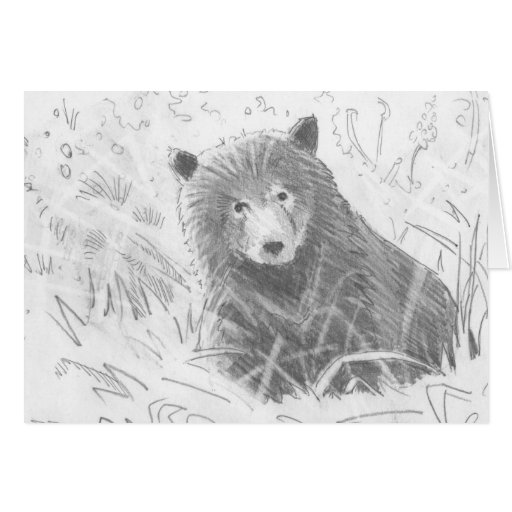 Grizzly bear cubs drawing - photo#7