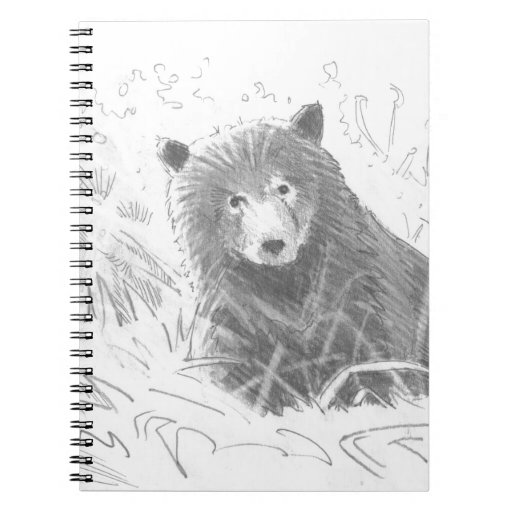 Grizzly bear cubs drawing - photo#3