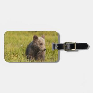 Grizzly Bear Cub Luggage Tag