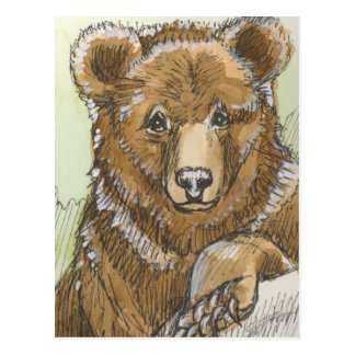 Grizzly Bear Cub Watching Postcard
