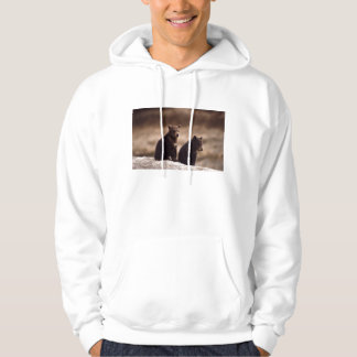 Grizzly Bear  cubs Hooded Pullover
