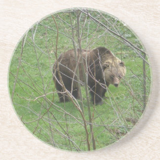 ' Grizzly Bear Drink Coaster