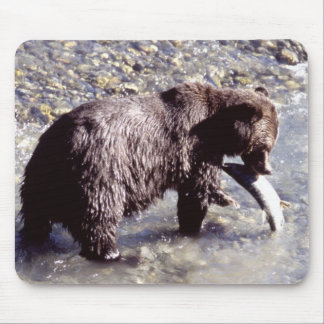 Grizzly Bear Eating a Salmon Mouse Pad