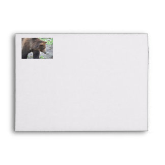 Grizzly Bear Envelopes
