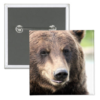Grizzly Bear Face Button