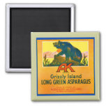 Grizzly Bear Fridge Magnet