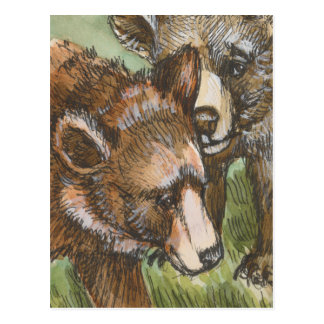Grizzly Bear Friends Postcard
