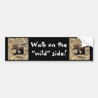 Grizzly Bear Gifts Car Bumper Sticker