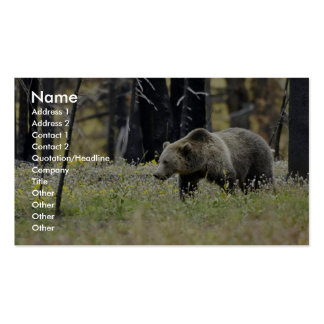 Grizzly Bear in Field at Yellowstone National Park Business Cards