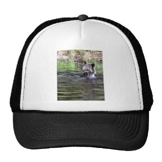 Grizzly Bear in the Water Trucker Hats