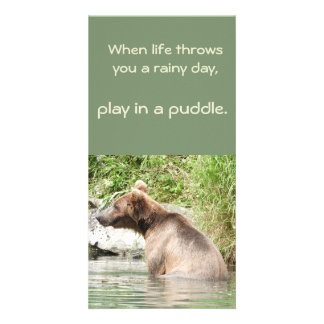Grizzly bear in water postcard
