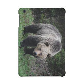 Grizzly Bear iPad Mini Cases