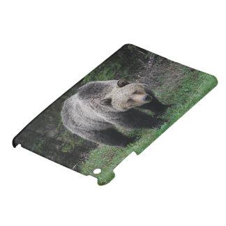 Grizzly Bear iPad Mini Covers
