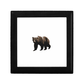Grizzly Bear Keepsake Box