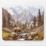 Grizzly Bear Landscape Mouse Pad