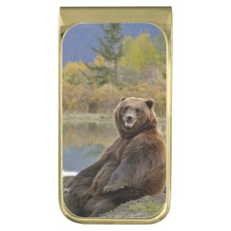 Grizzly Bear Money Clip