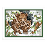 Grizzly Bear Mother and Cubs in Winter Postcard