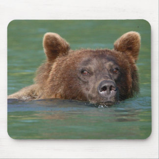 Grizzly Bear Mouse Pad