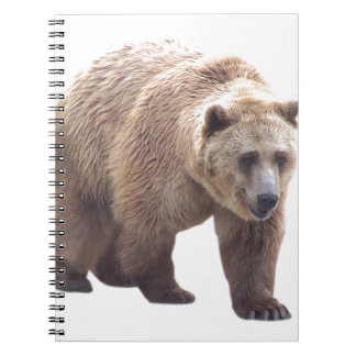 Grizzly Bear Spiral Note Book