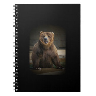 Grizzly Bear Note Books