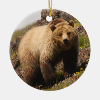 grizzly bear on the mountain Double-Sided ceramic round christmas ornament