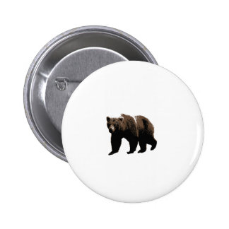 Grizzly Bear Pins