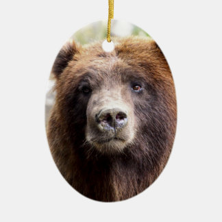 Grizzly Bear Portrait Close Up Double-Sided Oval Ceramic Christmas Ornament