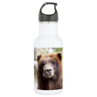 Grizzly Bear Portrait Close Up Water Bottle