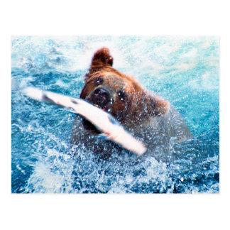 Grizzly Bear Postcard Postcards
