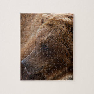 Grizzly Bear Puzzle
