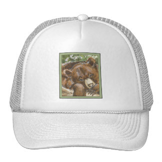 Grizzly Bear Resting Mesh Hat