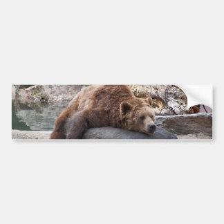 Grizzly Bear Resting On Rock Bumper Sticker