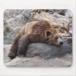 Grizzly Bear Resting On Rock Mousepads