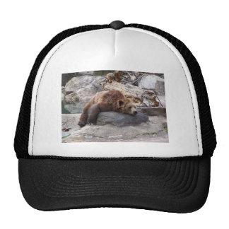 Grizzly Bear Resting On Rock Trucker Hat